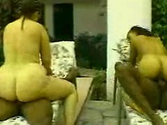 Big asses fucked by big black cocks
