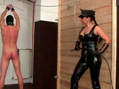 Leather mistress whips him hard over the back