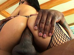 Sativa Rose in black fishnet body enjoying interracial anal sex